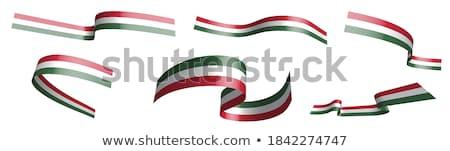 Festett Magyarország zászló integet szél graffiti Stock fotó © oxygen64