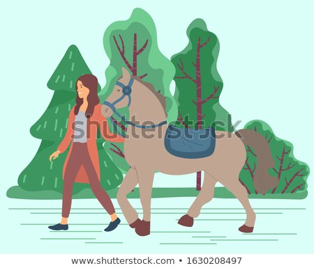 Woman Lead Horse, Stallion with Saddle and Curb Stock photo © robuart
