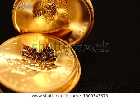 pénz · érmék · számlák · tekert · felfelé · föld - stock fotó © elenaphoto