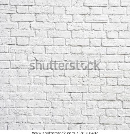 blanche · mur · de · briques · parfait · carré · photographie · bâtiment - photo stock © rufous