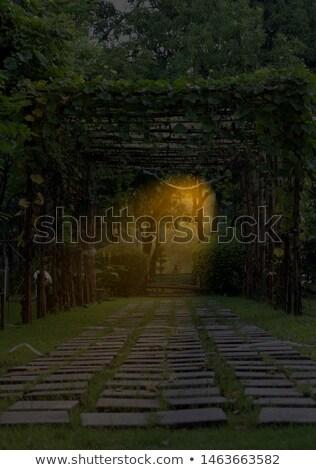 walkway through Stock photo © Witthaya