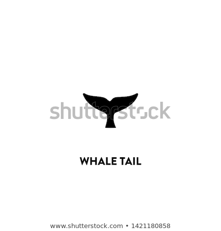 fish tail icons stock photo © cidepix