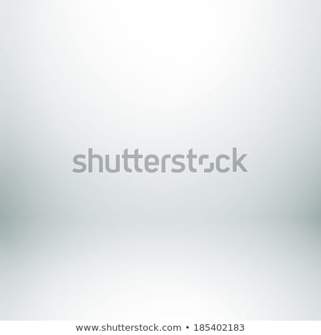 Szimmetrikus szürke absztrakt feketefehér fekete fehér Stock fotó © ElenaShow