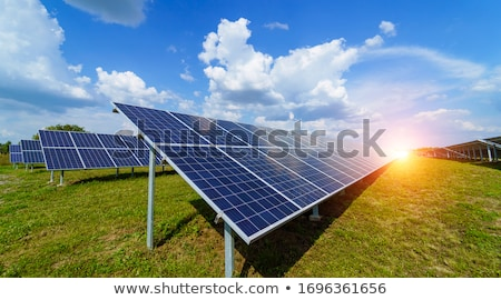 Fotovoltaica usina silício energia solar verde milho Foto stock © CaptureLight