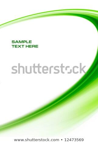 zöld · fraktál · elrendezés · 3D · absztrakt · konzerv - stock fotó © arenacreative