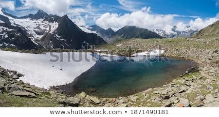 Glacial Ice Face on a Glacial Lake Stock photo © wildnerdpix