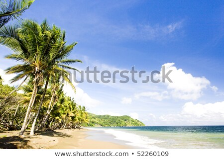 Pinfold Bay, Tobago Stock photo © phbcz