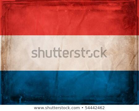 netherlands grunge flag stock photo © saicle