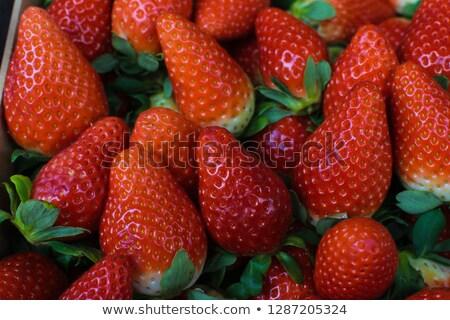 Eprek fehér gyümölcs édes egészséges fényes Stock fotó © guffoto