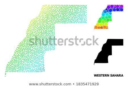 Stock fotó: Térkép · western · Szahara · pont · minta · vektor