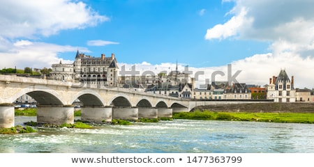 Beautiful medieval village Amboise, Loire Valley, France Stock photo © wjarek