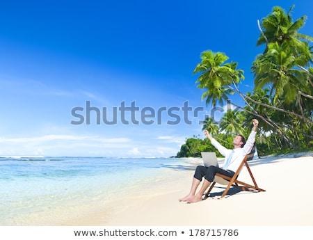Man using laptop on deck chair at the beach Stock photo © wavebreak_media