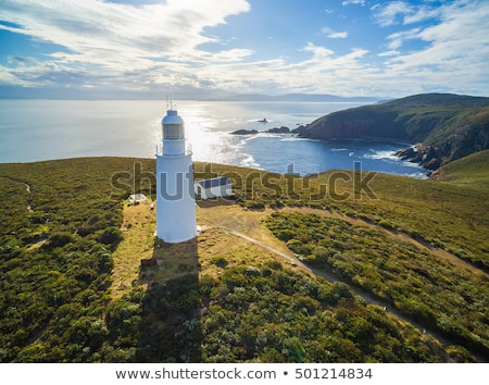 Alto acantilado costa océano isla tasmania Foto stock © roboriginal