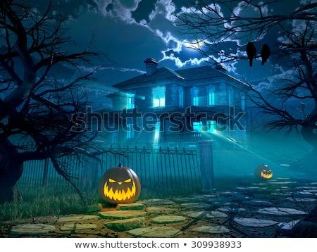 Preto corvo noite 3d render voador lua Foto stock © Elenarts