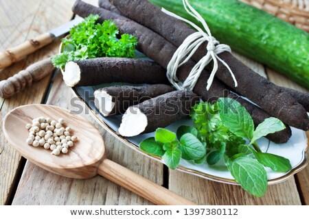 Fresh bunch of Black salsify Stock photo © Klinker
