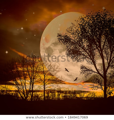 3d lake with palm trees at moonlight stock photo © kjpargeter