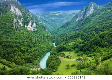 Stock photo: River in the mountains of Montenegro