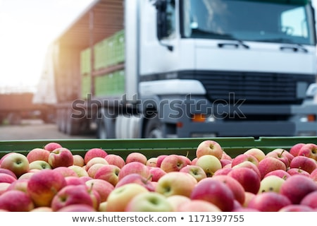 Food Transport Stock photo © Lightsource