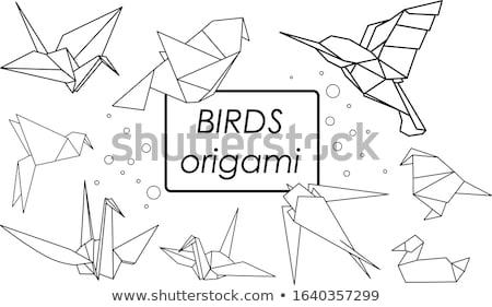 origami · pato · cor · de · malva · ilustração · branco - foto stock © sifis