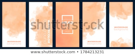 absztrakt · szín · spektrum · vízszintes · vektor · papír - stock fotó © lenapix