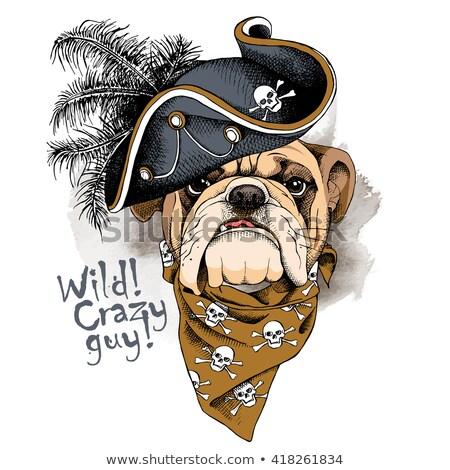 Bulldog Portrait Mascot Stock photo © sdCrea