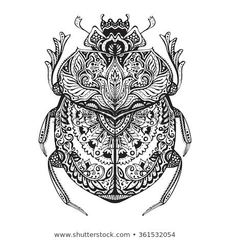 estilizado · besouro · vetor · preto · e · branco - foto stock © frescomovie