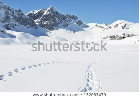mountains snow peak and village stock photo © joyr