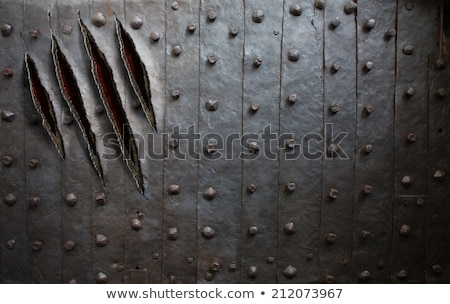 monsters or dragon claws in crack stock photo © barsrsind