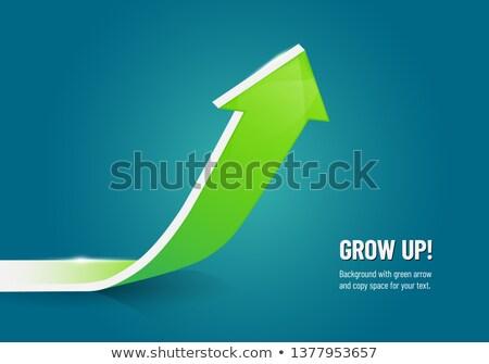 growth   text on the blue pointer 3d stock photo © tashatuvango
