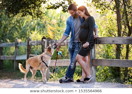 Stockfoto: Kaukasisch · zwangere · paar · honden · vrouw · hond