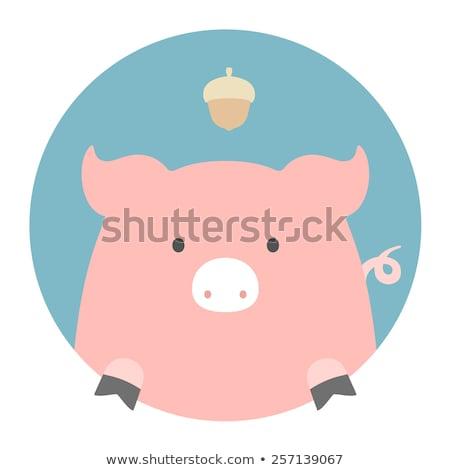 животного набор портрет графика свинья лице Сток-фото © FoxysGraphic