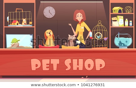 Tortoise Pet Shop Animal, Vector Illustration Stock photo © robuart