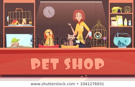 tortoise pet shop animal vector illustration stock photo © robuart
