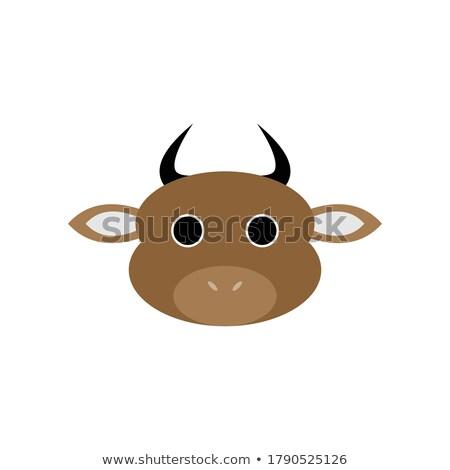 Male cartoon illustrazione guardando animale arrabbiato Foto d'archivio © cthoman