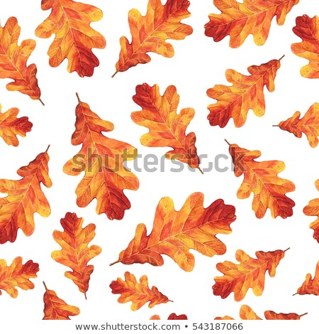 Watercolor autumn pattern with oak leaves. Stock photo © Artspace
