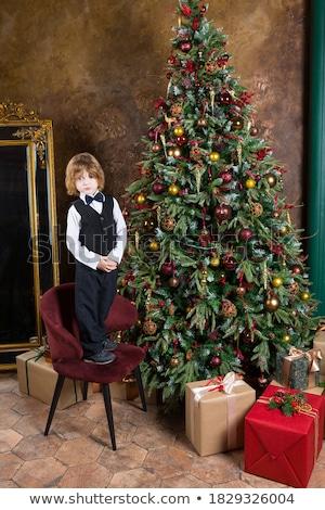 Christmas gift box and xmax fir tree Stock photo © karandaev