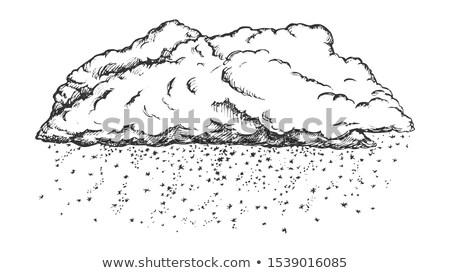 Nube cadere fiocchi di neve in bianco e nero vettore stagione invernale Foto d'archivio © pikepicture