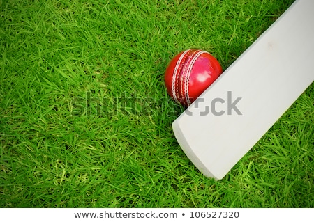 Cricket Bat And Ball On Turf Grass Stock photo © AndreyPopov