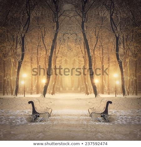 Emberek sétál város park tél hóvihar Stock fotó © robuart