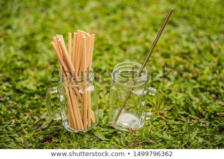 Acier potable vs jetable herbe zéro Photo stock © galitskaya