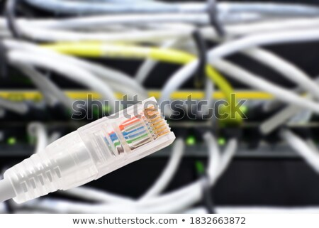 Data connection with rj45 patch cable, conceptual shot. Stock photo © hamik