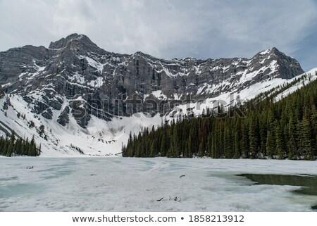 Montagnes Canada montagne laisse automne jaune Photo stock © skylight