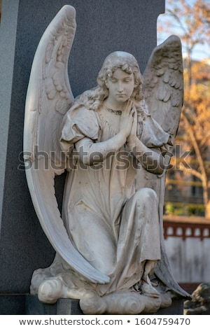 detail of a old graveyard in Berlin Stock photo © prill