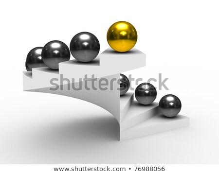 golden leader with reflection  Stock photo © marinini