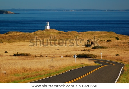 Cattle Point Lighthouse Stock photo © searagen