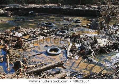 Polluted river bed Stock photo © leungchopan