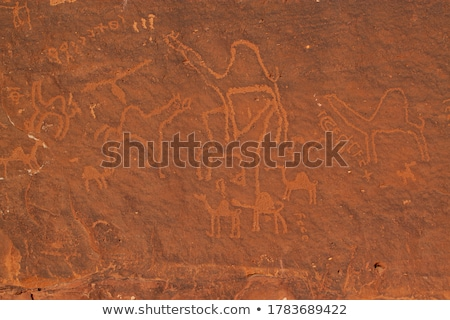 close frontal view of a sandstone wall Stock photo © Zerbor