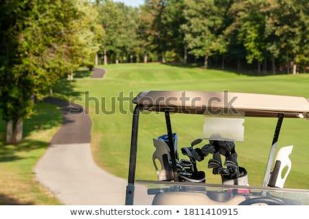 Foto d'archivio: Vecchio · sedia · campo · da · golf · solitaria · vuota · autunno