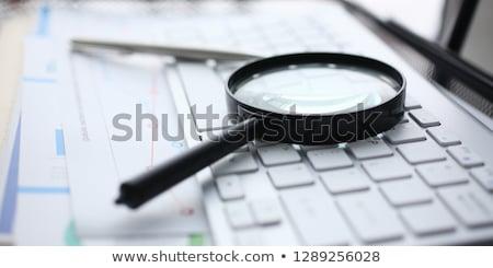 Magnifying Glass with Translating Concept. Stock photo © tashatuvango