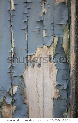 Decayed wood Stock photo © smuay